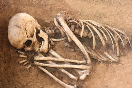 very old human skull from the historical place Stock Photo - 3635722