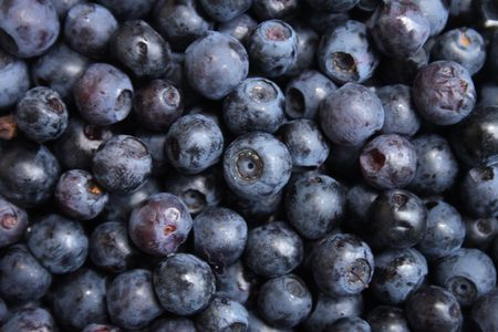 fresh blueberries as very nice food background Stock Photo - 6378288