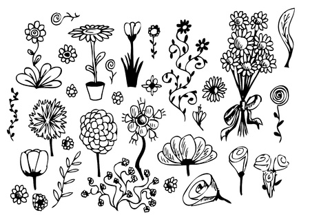 hand drawn flowers isolated on the white background