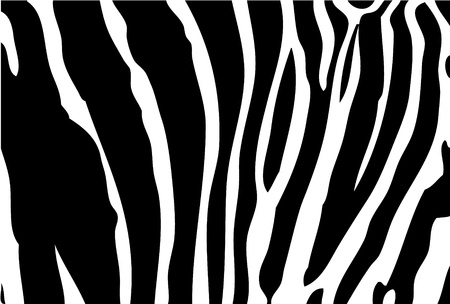 Zebra Background As Very Easy Animal Background Royalty Free