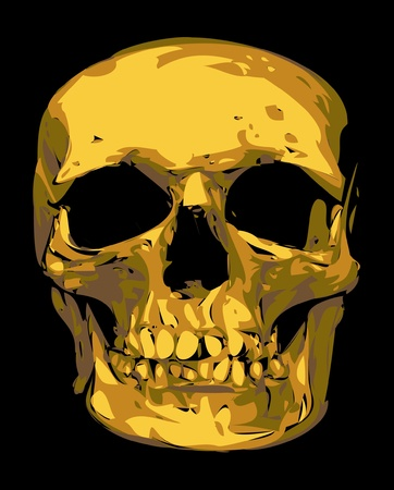 golden human skull isolated on the black background Vector