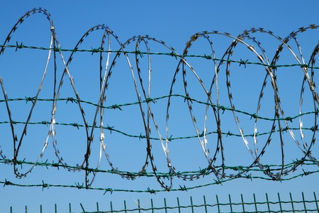 barbed wire against blue sky as war  background Stock Photo - 10963690