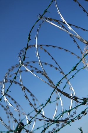 barbed wire against blue sky as war  background Stock Photo - 10967539