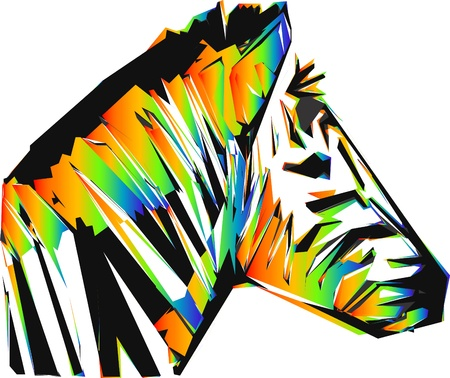 color zebra head isolated on the white background Vector