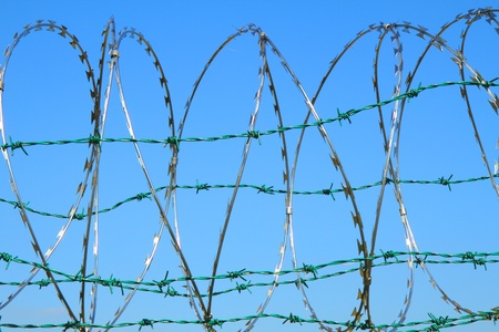 barbed wire against blue sky as nice army background Stock Photo - 12320077
