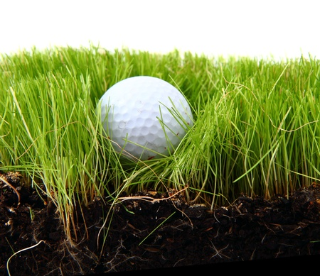 golf ball in the green grass as sport background Stock Photo - 13560105