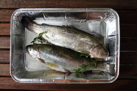 nice food: raw trout fish as very nice food background