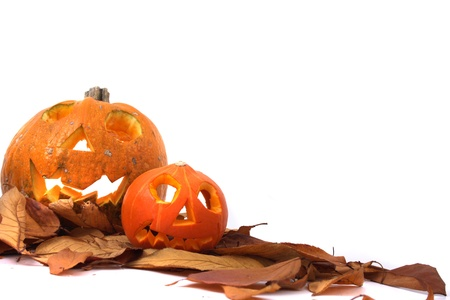 Fall Festival: halloween pumpkins isolated on the white background