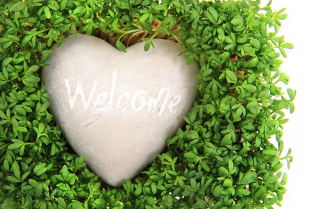 watercress and stone heart isolated on the white background photo