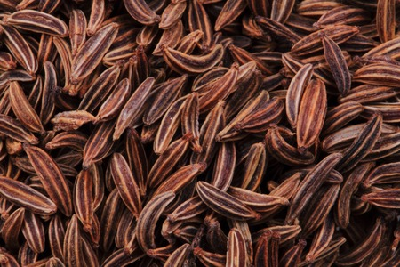 caraway: caraway spice texture as natural food  background