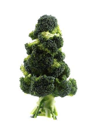 brocolli: christmas tree from brocolli isolated on the white background Stock Photo