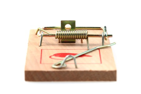 mouse trap: new mouse trap isolated on the white background