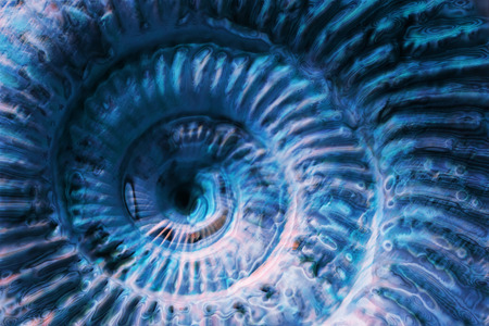 blue spiral: abstract blue spiral as very nice background Foto de archivo