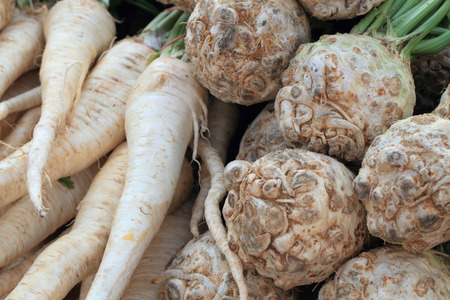 celery and parsley  root as food background