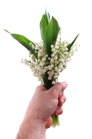 lily of valley isolated on the white background Stock Photo