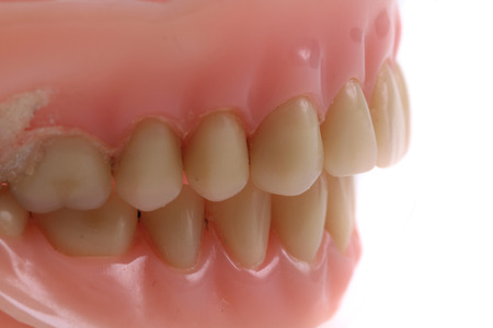 prothetic: teeth prothesis texture as nice medical background