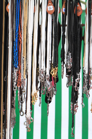 dog leash collection as nice color background Stock Photo
