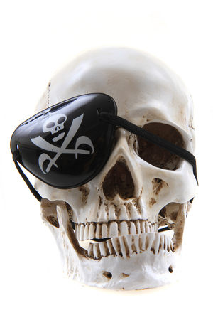 human skull s pirate isolated on the white background