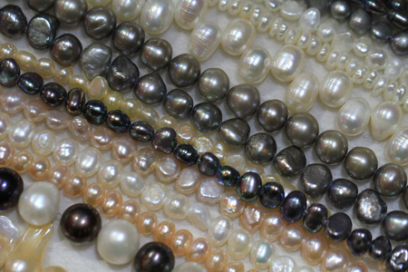 luxury pearl texture as very nice and color natural background Stock Photo