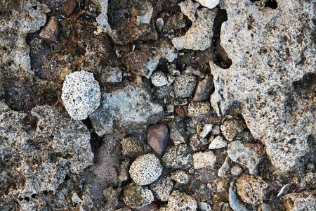 old coral stone texture as very nice natural background