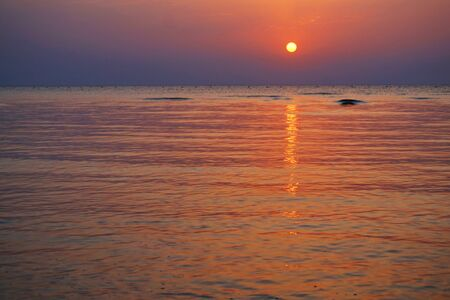 sunset in the egypt near coral reef
