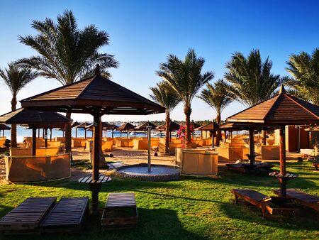 green hotel garden in Egypt as nice background