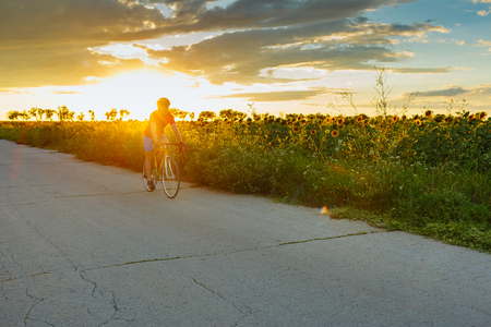 The cyclist in red blue form rides along fields of sunflowers. In the background sunset sky. Horizontally framed shot.