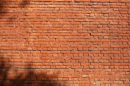 Brick wall on which the shadows of leaves of tree. Horizontally framed shot.