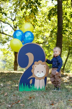 Portrait of a cute little boy on the background of nature. Birthday of a two year old boy. Decor with the number two with lion and balloons. Vertically framed shot.