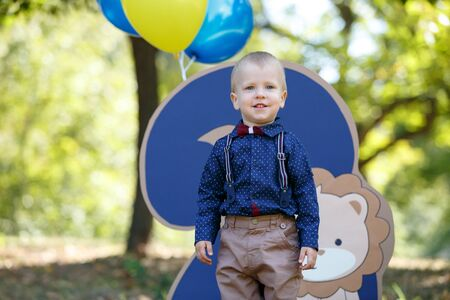 Portrait of a cute little boy on the background of nature. Birthday of a two year old boy. Decor with the number two with lion and balloons. Horizontally framed shot.