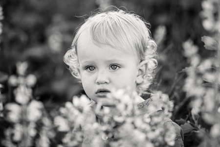 A cute little boy in a lavender field. Happy family leisure outdoors. Horizontally framed shot. 版權商用圖片