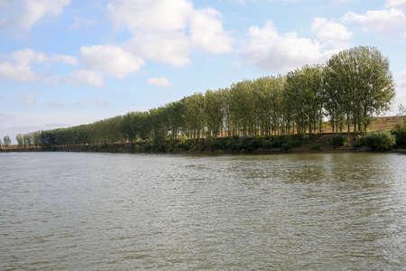 River landscape. River, coastline, poplars blue sky Horizontally framed shot