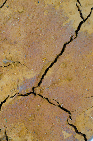 Cracks and fissures in the dry earth create beautiful, richly textured images. Stock Photo