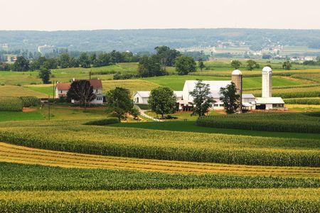 farmlands: An amish farmland in Pennsylvania.