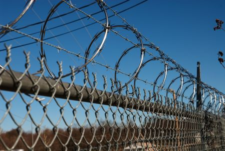 Barbed wire fence Stock Photo - 2683204