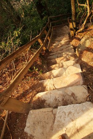 peace risk: A stair case in the woods that leads downward Stock Photo