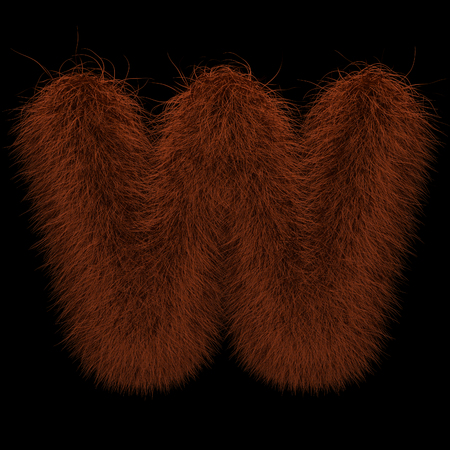 Illustration 3D Rendering Creative Illustration Ginger Orangutan Furry Letter W