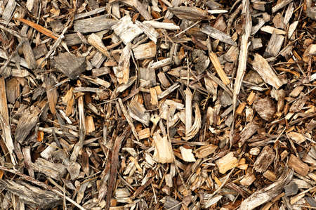 texture of wood chips