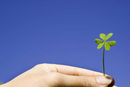 Finger holding a clover in sky background with the concept of lucky,growth,freedom and harmony photo