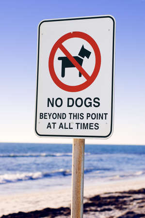 Warning Sign in the beach - No Dogs Beyond This Point At All Times