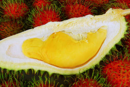 Tropical fruits - Durian on Rambutans background.  Stock Photo