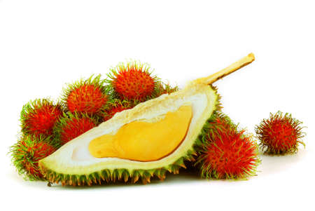 Tropical Fruits - Durian and Rambutans on white background