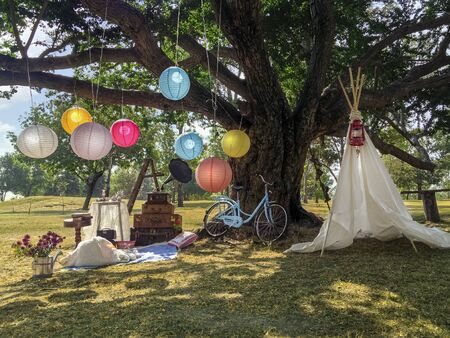 Funny surprise, a picnic in the park, romantic lunch under big tree, decoration idea