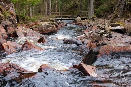 River in the Swedish countryside photo