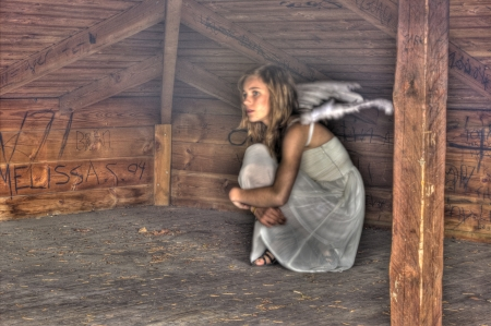 A scared Angel hiding in a shelter photo