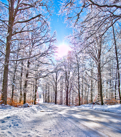 sweden winter: A Winter country road in Sweden