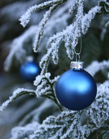 Blue seasonal baubles on frost covered tree