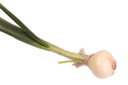 scallion: scallion, also known as a spring onion Stock Photo