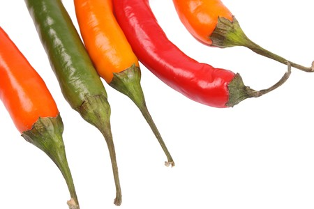 piperaceae: Pepper  on a withe isolated background with copy space