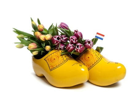 clog: The tulip is the most succesful export product of The Netherlands Stock Photo